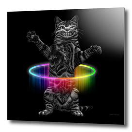HULLAHOOP CAT