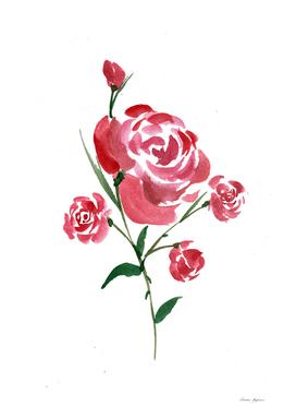 Simplistic Red Rose