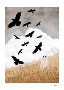 Walter and The Crows
