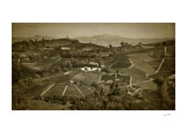 Calosso. Italian Hills