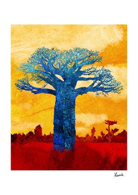One baobab