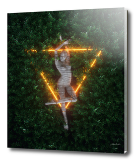 Triangle Dreams
