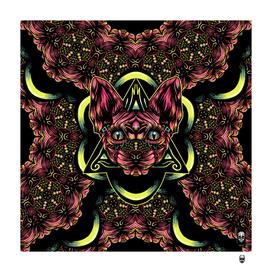 Sphynx Floral Color