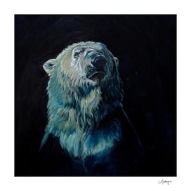 Hope Polar Bear