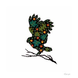Woodlands Owl 2
