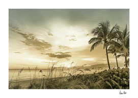 BONITA BEACH Sunset | Vintage