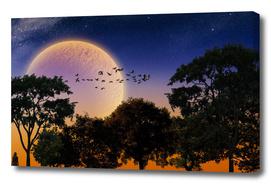 RDP-COMP 550006 Moonlight Mile_