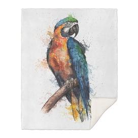 Macaw Parrot - Wildlife Collection