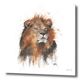 Lion - Wildlife Collection