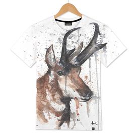 Red Deer - Wildlife Collection
