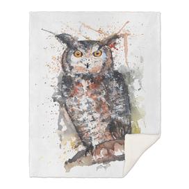 Owl - Wildlife Collection