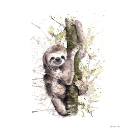Sloth - Wildlife Collection