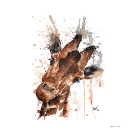 Giraffe - Wildlife Collection