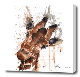 Giraffe - Wildlife Collection