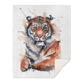 Tiger - Wildlife Collection