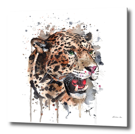 Leopard - Wildlife Collection