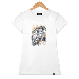 Zebra - Wildlife Collection