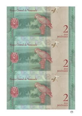 2 bolivares venezuelan banknotes collage