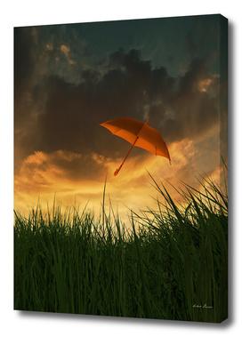 RDP-COMP 550024 Orange Umbrella