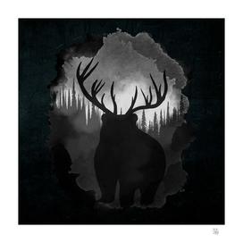 Bear Horns
