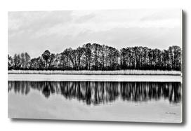 White Symphony of Winter Lake