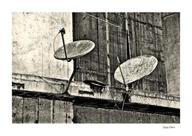 Urban Decay: Parabolics, 2015
