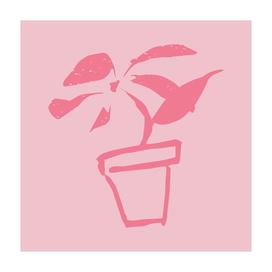 flower (pink line)