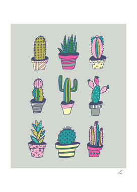 Cactussss