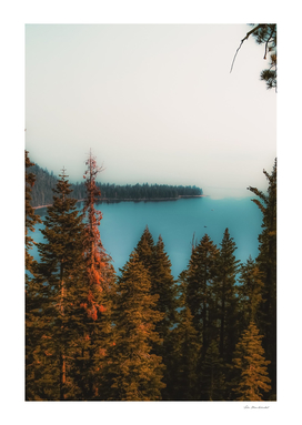 pine tree and lake scenic at Emerald Bay Lake Tahoe