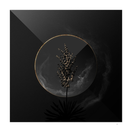 Shadowy Adam's Needle Botanical on Black and Gold