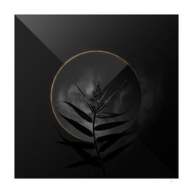 Shadowy Bush Cane Botanical on Black and Gold