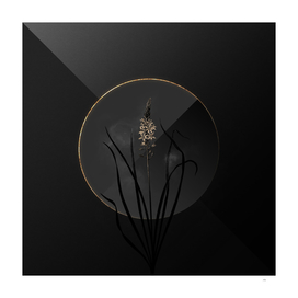 Shadowy Wild Asparagus Botanical on Black and Gold