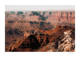 Summer view in the desert at Grand Canyon national park