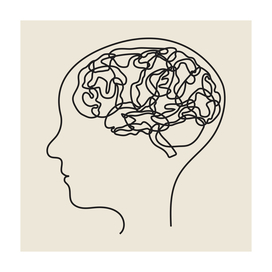 brain and head (line drawing)