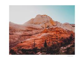Mountain view at Zion national park Utah USA