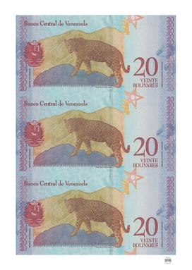 20 bolivares venezuelan banknotes collage