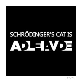 Schrodingers Experiment