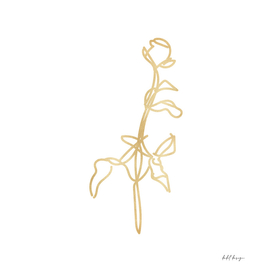 line art flower gold hand drawn sketch girly