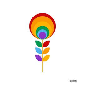 Rainbow Mid Century Flower