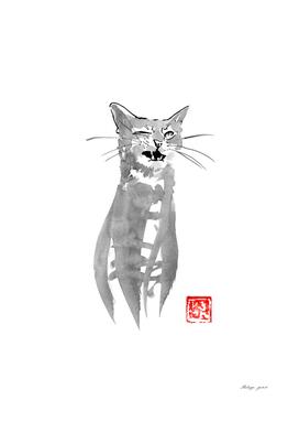 blinking cat