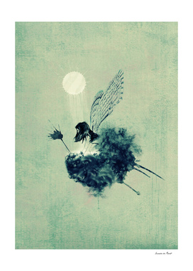 fairy calypso