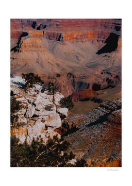 Desert scenic at Grand Canyon national park, Arizona, USA