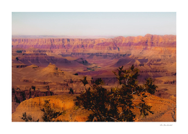 Desert in summer at Grand Canyon national park USA