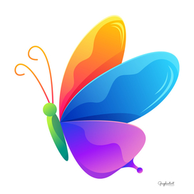 Butterfly Colorful Art
