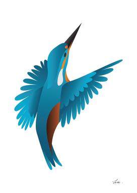 kingfisher bird 01
