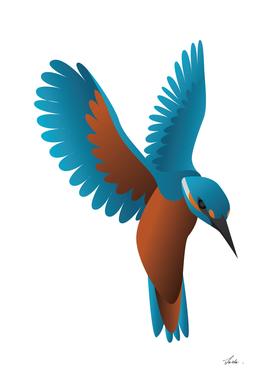 kingfisher bird 02