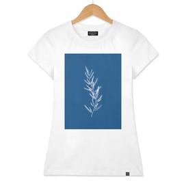 Blue Botanical II
