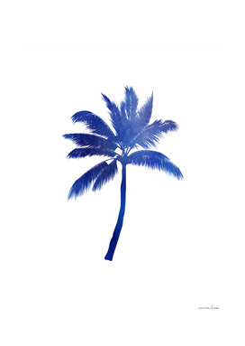 Blue Palm Tree
