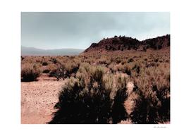 Desert scenic with foggy blue sky in California USA