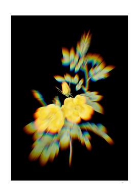 Prism Shift Yellow Sweetbriar Roses Botanical Illustration